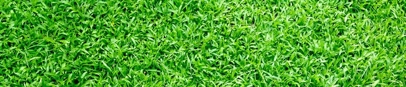 Garten- und Landschaftsbau Ertürk